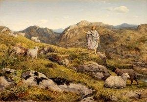 david in highlands